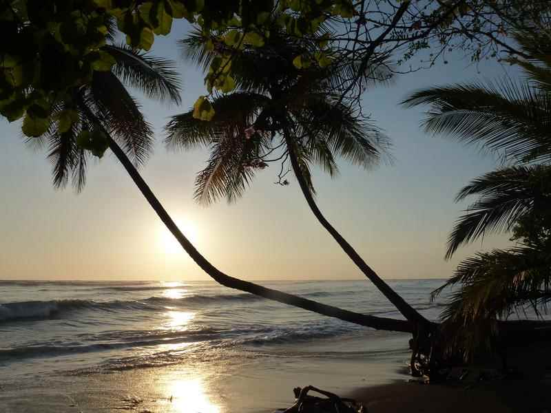 /book/hostels/hotels/puerto_jimenez/costa_rica